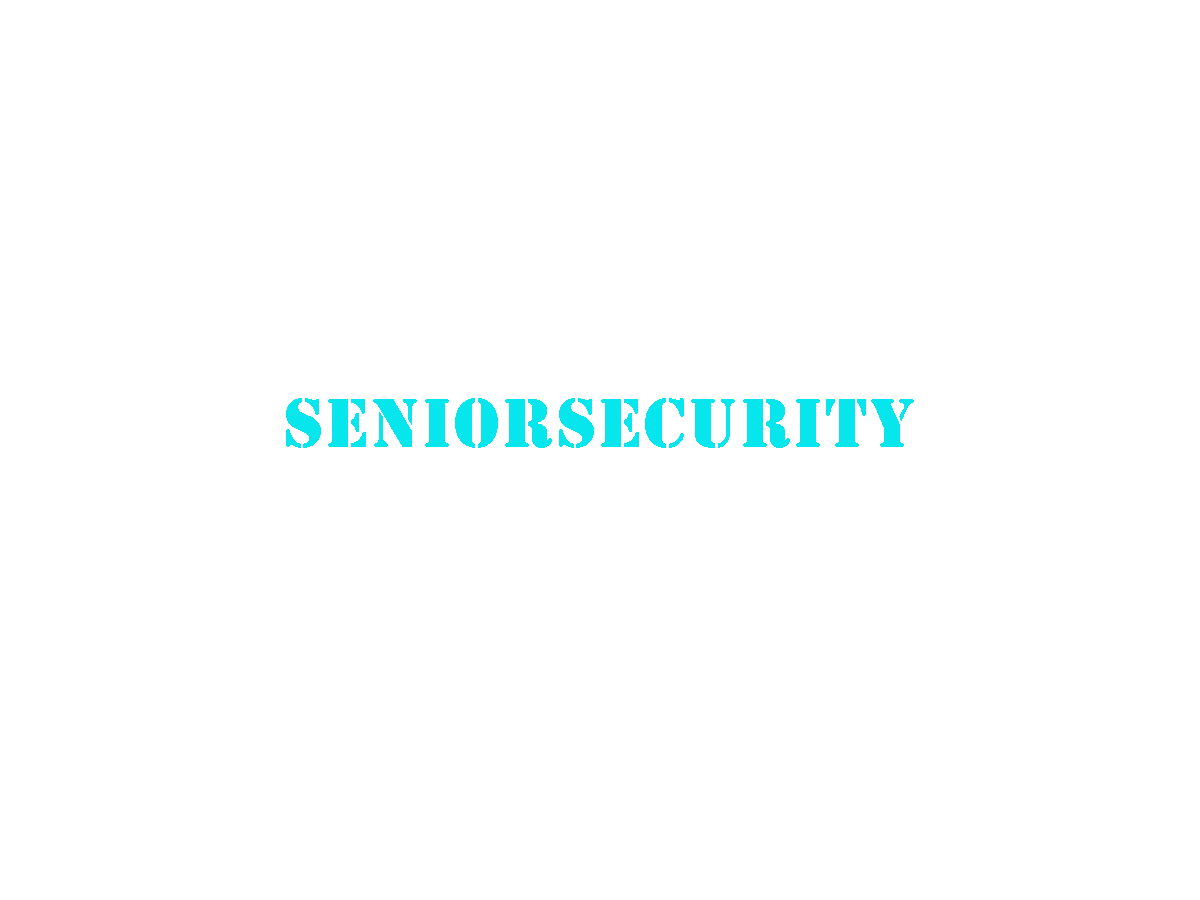 seniorsecurity